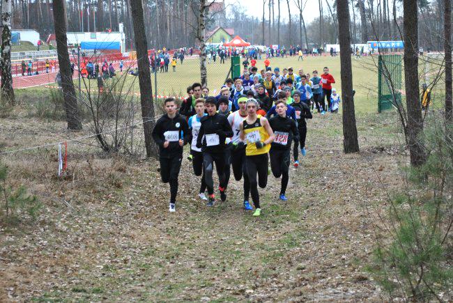 Mistrzostwa Krajowego Zrzeszenia LZS wbiegach przełajowych — Żerków 2019